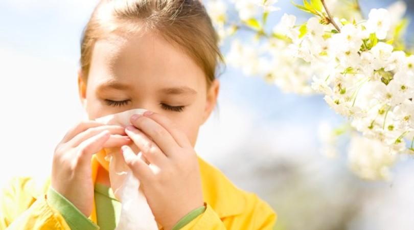 Аллергия и иммунитет: 5 методов укрепления организма