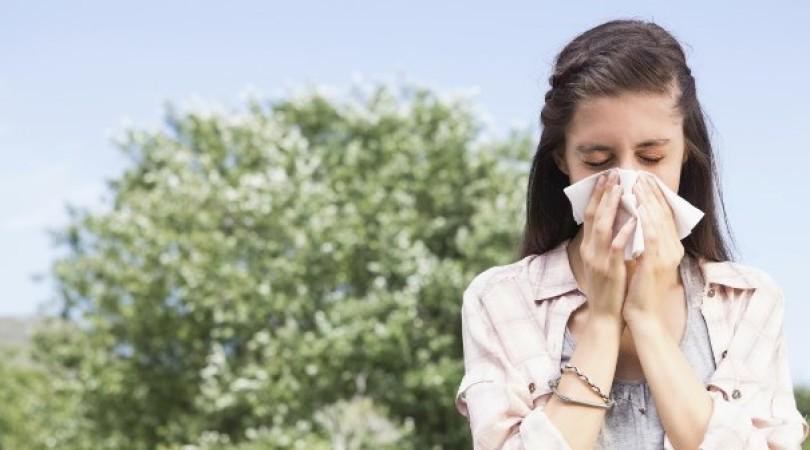 Аллергия на ольху: фото, как проявляется и чем лечить симптомы у детей и взрослых