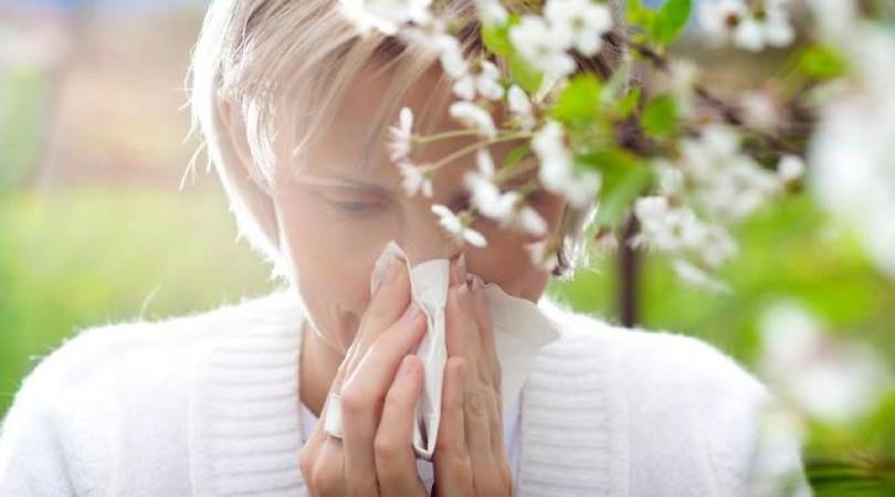 Поллиноз: симптомы и лечение сезонной аллергии в период обострения у детей и взрослых