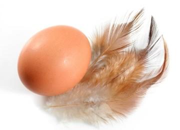 Аллергия на куриные яйца у ребенка и взрослого на лице и теле: фото, симптомы, лечение