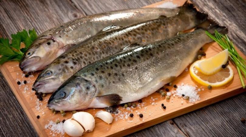 Аллергия на рыбу: может ли быть реакция на морепродукты, фото