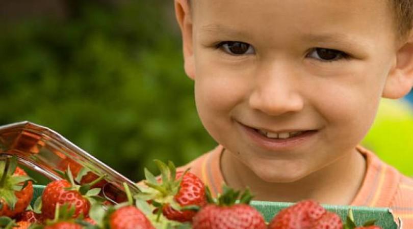 Аллергия на клубнику: фото, симптомы, лечение у ребенка и у взрослого